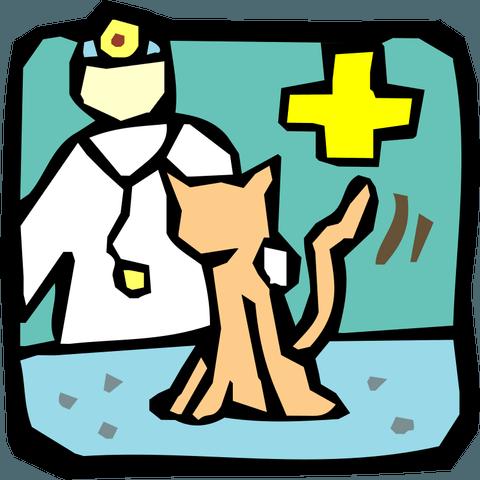 Первый поход к ветеринару