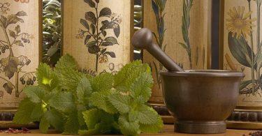 Советы при лечении травами