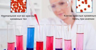 Лечение анемии крови у животных