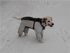 Защита от холода