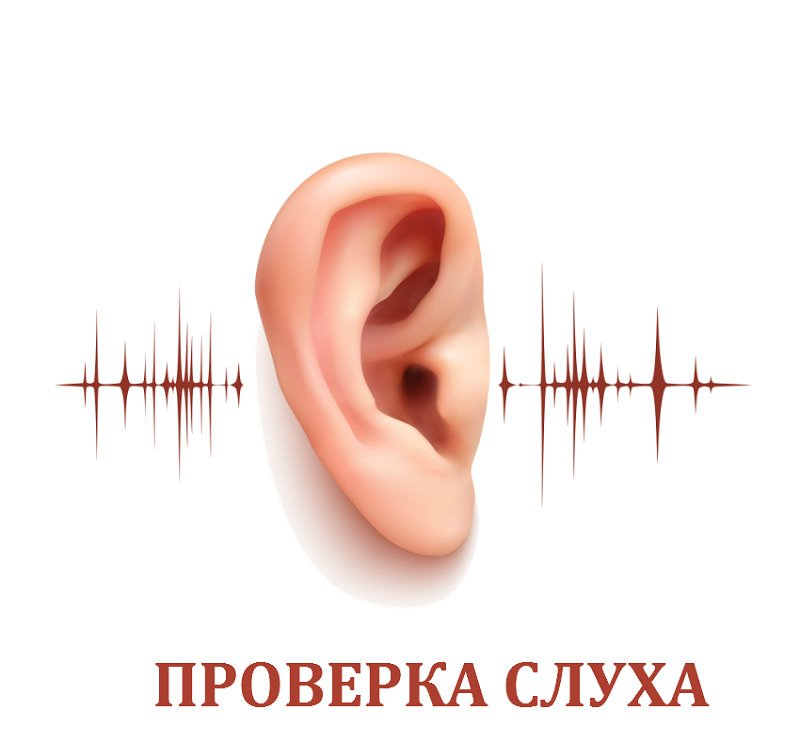 Как вернуть слух собаке или кошке