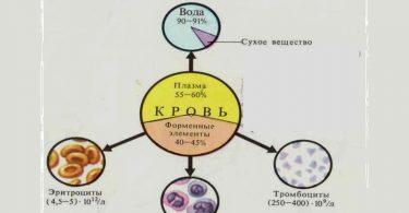 Кислородная емкость крови при ожоге