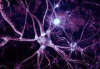 Нервная система при ожогах