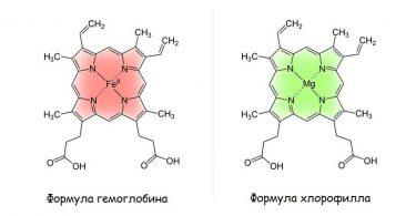 Содержание гемоглобина при ожоге