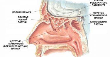 Причины фурункулеза у человека