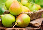 Чем полезна груша