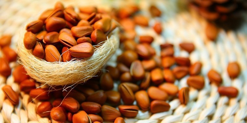 Сколько можно есть в день кедровые орехи