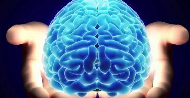 Тест на возможности мозга