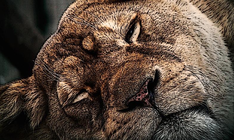 Как бороться с ленью и усталостью