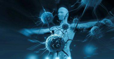 Вирусы в организме человека