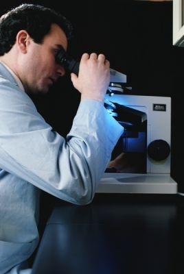 Микробоносители