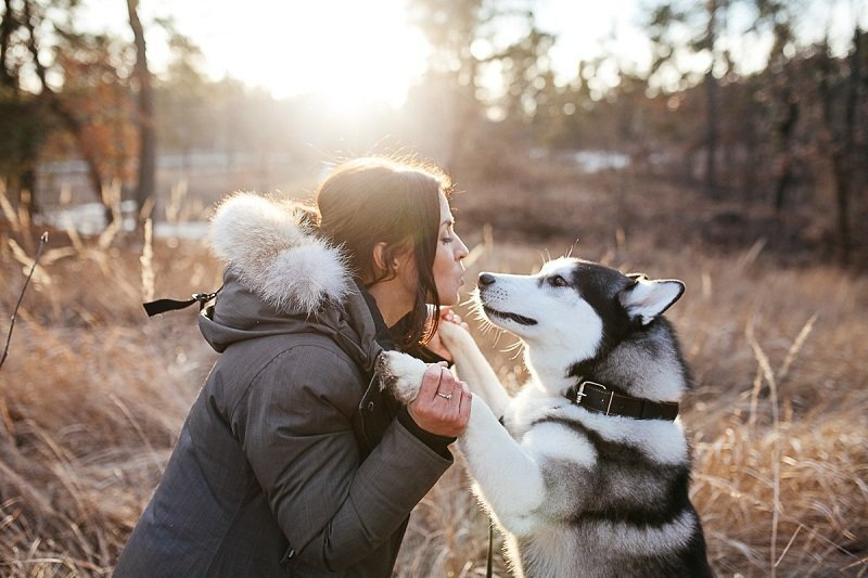Методы общения с животными