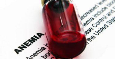 Рецепты и средства от анемии крови для животных