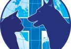 Воспаление у собак и кошек анального прохода - как лечить