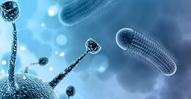 Ожоговая инфекция и токсемия