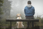 Как изменить свою жизнь к лучшему - советы