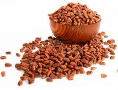 Горечь во рту: кедровые орехи, лечение