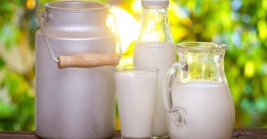Польза молока и вред молока