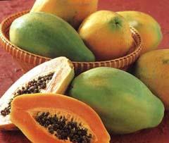 Лечебные свойства папайи