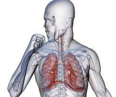 Диффузный пневмосклероз лечение народными средствами