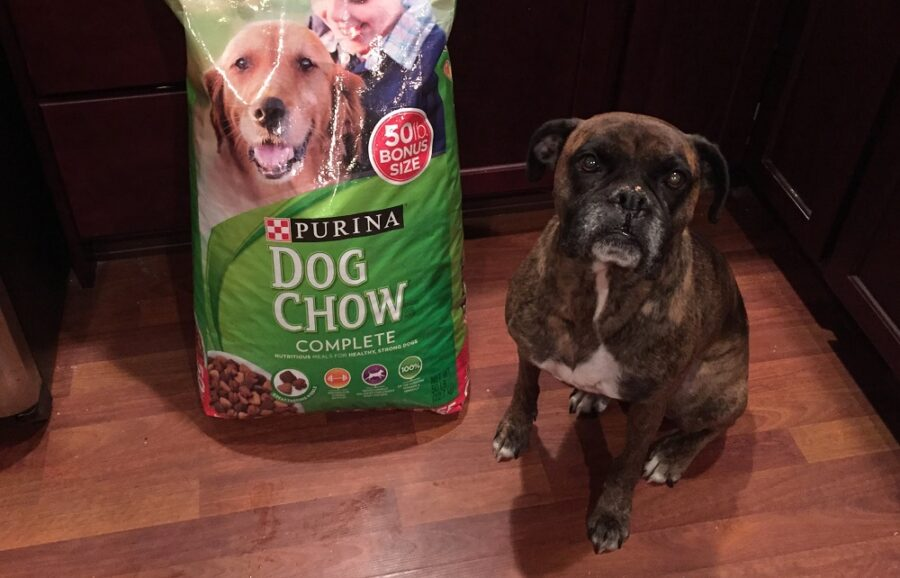 Purina one Dog Chow корм